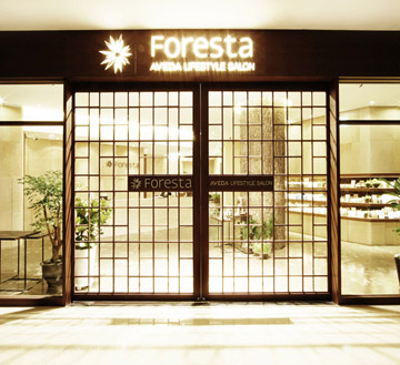 Welcom to Foresta